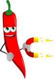 Red hot chili pepper with magnet Royalty Free Stock Images