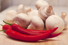 Red hot chili pepper and mushrooms Royalty Free Stock Photography