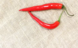 Red Hot Chili Pepper Royalty Free Stock Photo