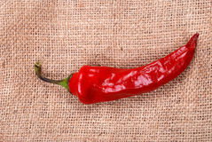 Red hot chili pepper on a sackcloth Stock Photography