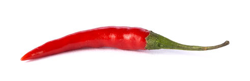 Red Hot Chili Pepper. Single red hot chili pepper isolated on white background Stock Photo
