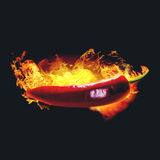 Red hot chili pepper. Stock Photos
