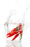 Red hot chili pepper splashing into water. Isolated on white Royalty Free Stock Photo