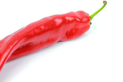 Red hot chili pepper. On whithe background Royalty Free Stock Photo