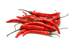 Red hot chili peppers. In isolated background Royalty Free Stock Photos