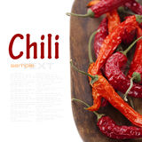 Red hot chili peppers. Isolated on white background with sample text Royalty Free Stock Photo