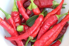 Cayenne pepper close-up Royalty Free Stock Images