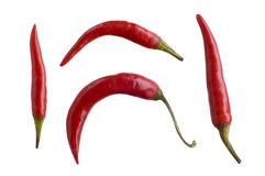 Red Hot Chili Peppers. Isolated on white Stock Photography