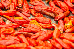 Red hot chili peppers. In thailand Stock Photo