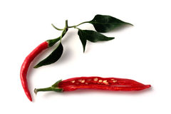 Red Hot Chili Peppers Immagine Stock