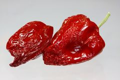 Red hot chili peppers. Dried red hot chili peppers Stock Images