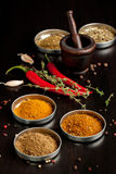 Red Hot Chili Peppers And Spices Royalty Free Stock Images