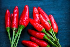 Red hot Chili peppers. On black slate Stock Photos