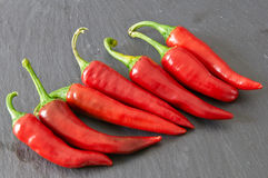 Red hot chili peppers. On a black stale tray Royalty Free Stock Images