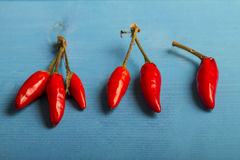Red Hot Chili Peppers Stock Image