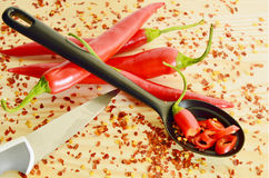 Red hot chili peppers with cayenne in Heart-shaped cup Royalty Free Stock Image
