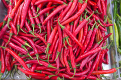 Red hot chili peppers. Close up of red hot chili peppers royalty free stock images