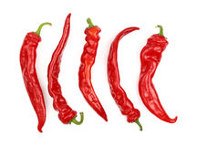 Red hot chili peppers close up isolated on white Royalty Free Stock Photos