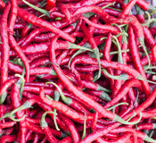 Red hot chili peppers. Closeup view and texture stock photos