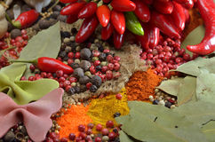 Red hot chili peppers and colors spices Stock Photography