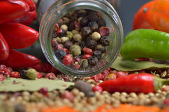 Red hot chili peppers and colors spices Royalty Free Stock Photos