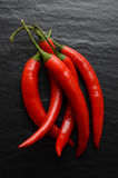 Red hot chili peppers on a dark background Stock Photos