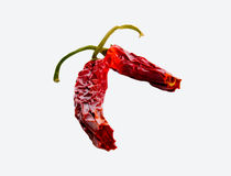 Red hot chili peppers. The dry red chilli peppers Stock Photography
