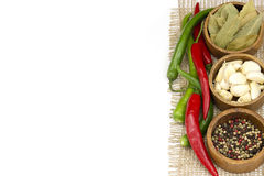 Red hot chili peppers, garlic and spices Royalty Free Stock Image