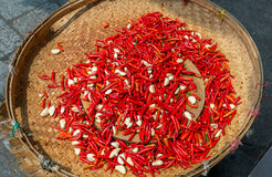 Red hot chili peppers with garlic on a wicker basket Royalty Free Stock Images