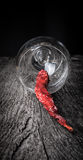 Red hot chili peppers in a glass on a dark wooden background Royalty Free Stock Images