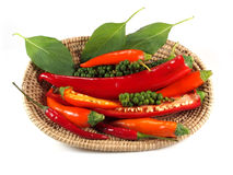 Red Hot Chili Peppers with herbs and spices over white backgroun Royalty Free Stock Photo