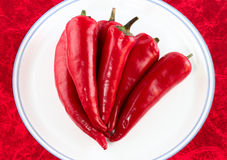 Red hot chili peppers isolated Royalty Free Stock Images