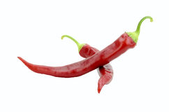 Red hot chili peppers isolated Stock Photography