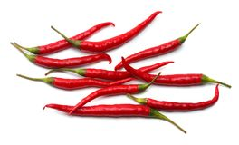 Red hot chili peppers isolated on white background Royalty Free Stock Photo