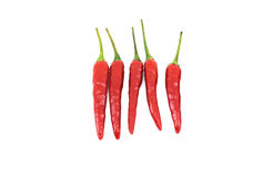 Red hot chili peppers isolated on white Stock Photos