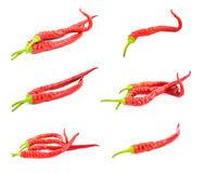 Red hot chili peppers isolated on white Royalty Free Stock Photos