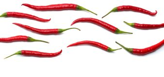 Red hot chili peppers isolated on white background top view Royalty Free Stock Photography
