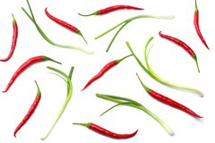 Red hot chili peppers isolated on white background top view Stock Image