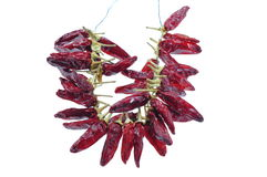 Red hot chili peppers necklace Royalty Free Stock Images