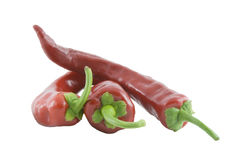 Red hot chili peppers over white background Stock Images