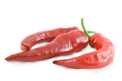 Red hot chili peppers over white background Royalty Free Stock Image