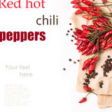 Red hot chili peppers over white Royalty Free Stock Images