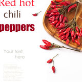 Red hot chili peppers over white Stock Images