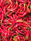 Red hot chili peppers. Pack of some organic red hot chili peppers royalty free stock photo