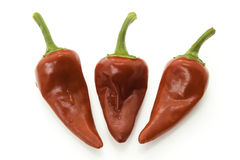 Red hot chili peppers. Red hot chili pepper on white backround stock image