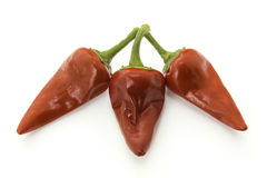 Red hot chili peppers. Red hot chili pepper on white backround royalty free stock image