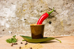 Red hot chili peppers and spices Stock Images