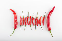 Red hot chili peppers on a table Royalty Free Stock Photos