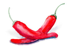 Red hot chili peppers Royalty Free Stock Images
