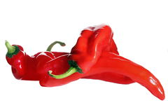 Red hot chili peppers on white background Royalty Free Stock Images